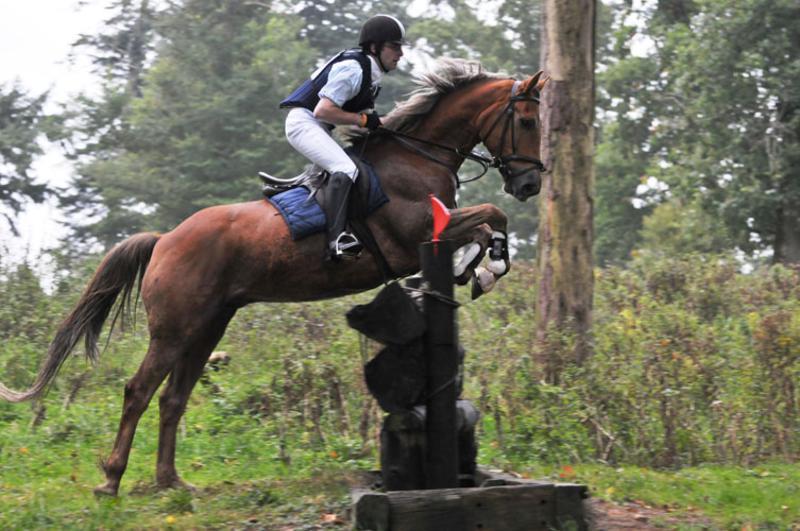 CLE Equestrian Centre 6_800x531