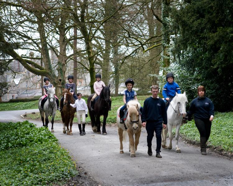 CLE Equestrian Centre.._750x600